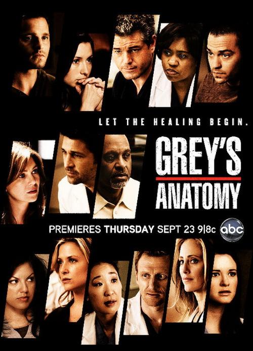 Анатомия страсти / Анатомия Грей 8 сезон (2011-2012) смотреть онлайн смотреть онлайн